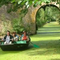 La Venise verte