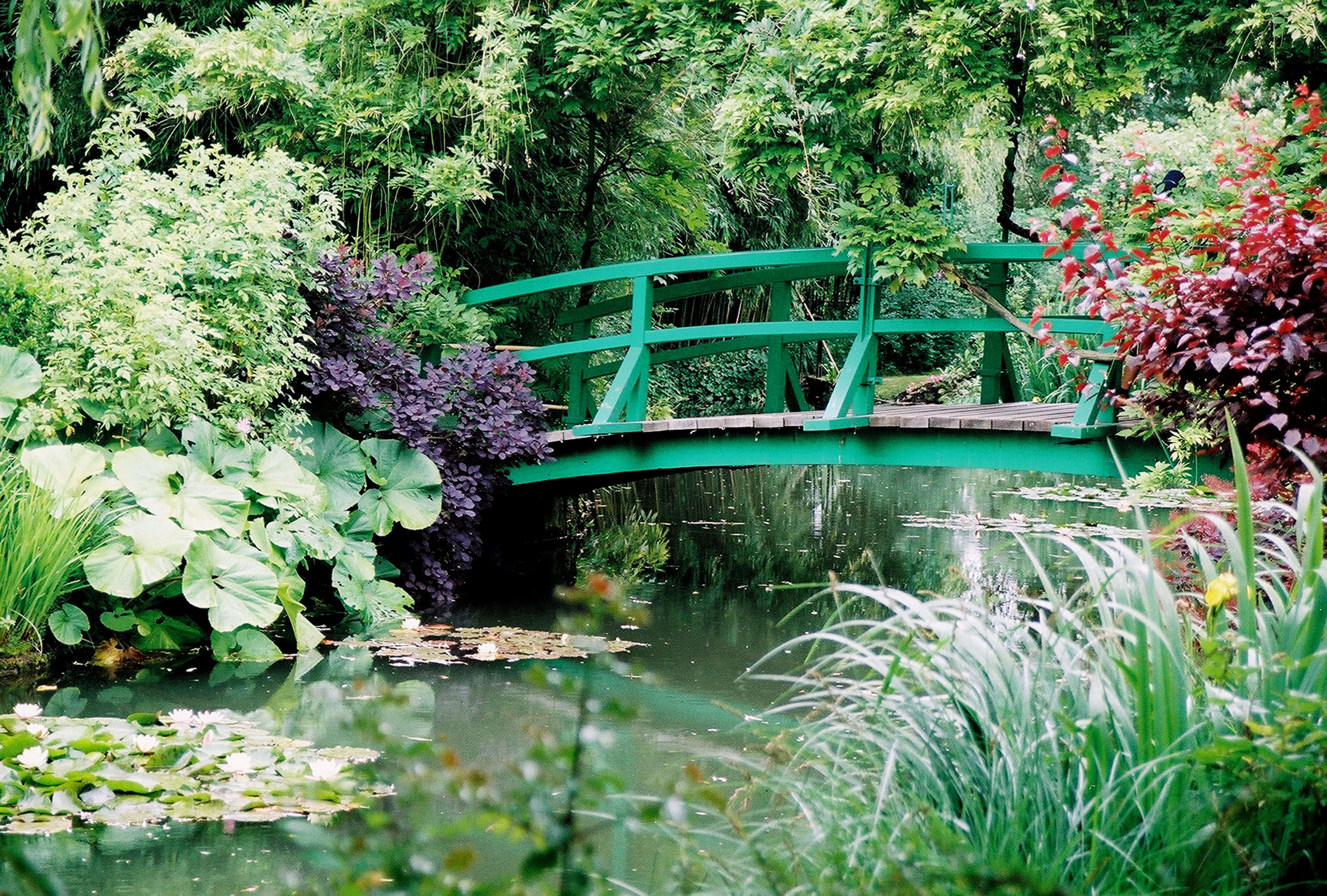 Monet s Japanese Bridge at Giverny Outdoor Dream Space